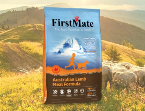 Che agnello è usato nelle crocchette FirstMate?