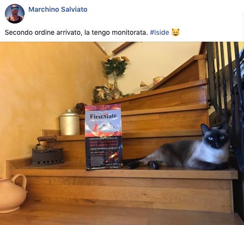 testimonianza gatto 21