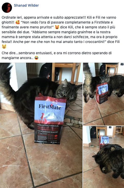 testimonianza_gatto_31