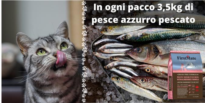 pesce azzurro crocchette firstmate