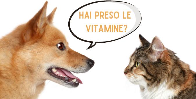 Integrazioni cani e gatti vitamine e sali minerali