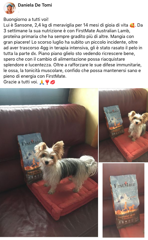 testimonianza_cane_ 24