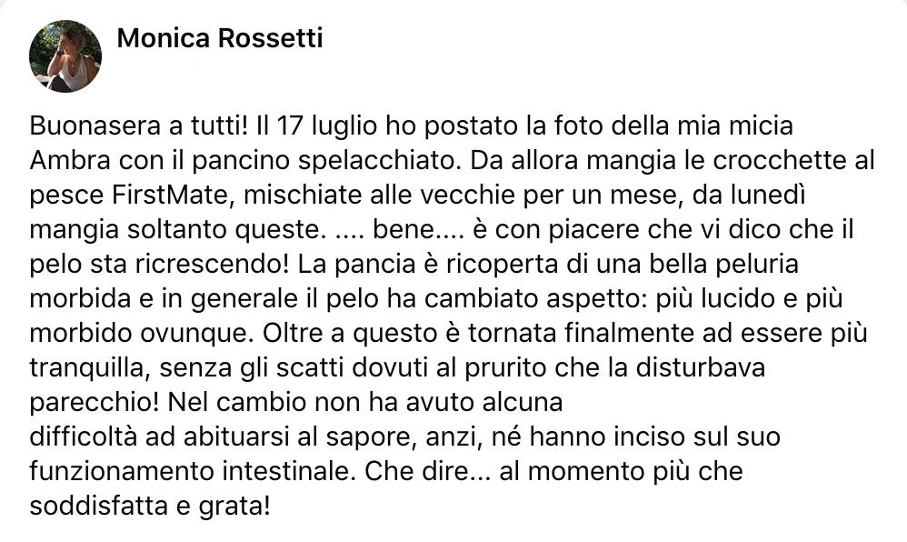 testimonianza_gatto_42