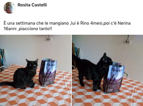 testimonianza_gatto_51
