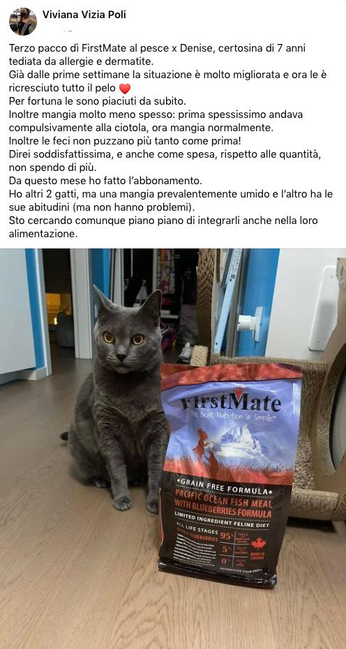 testimonianza_gatto_55
