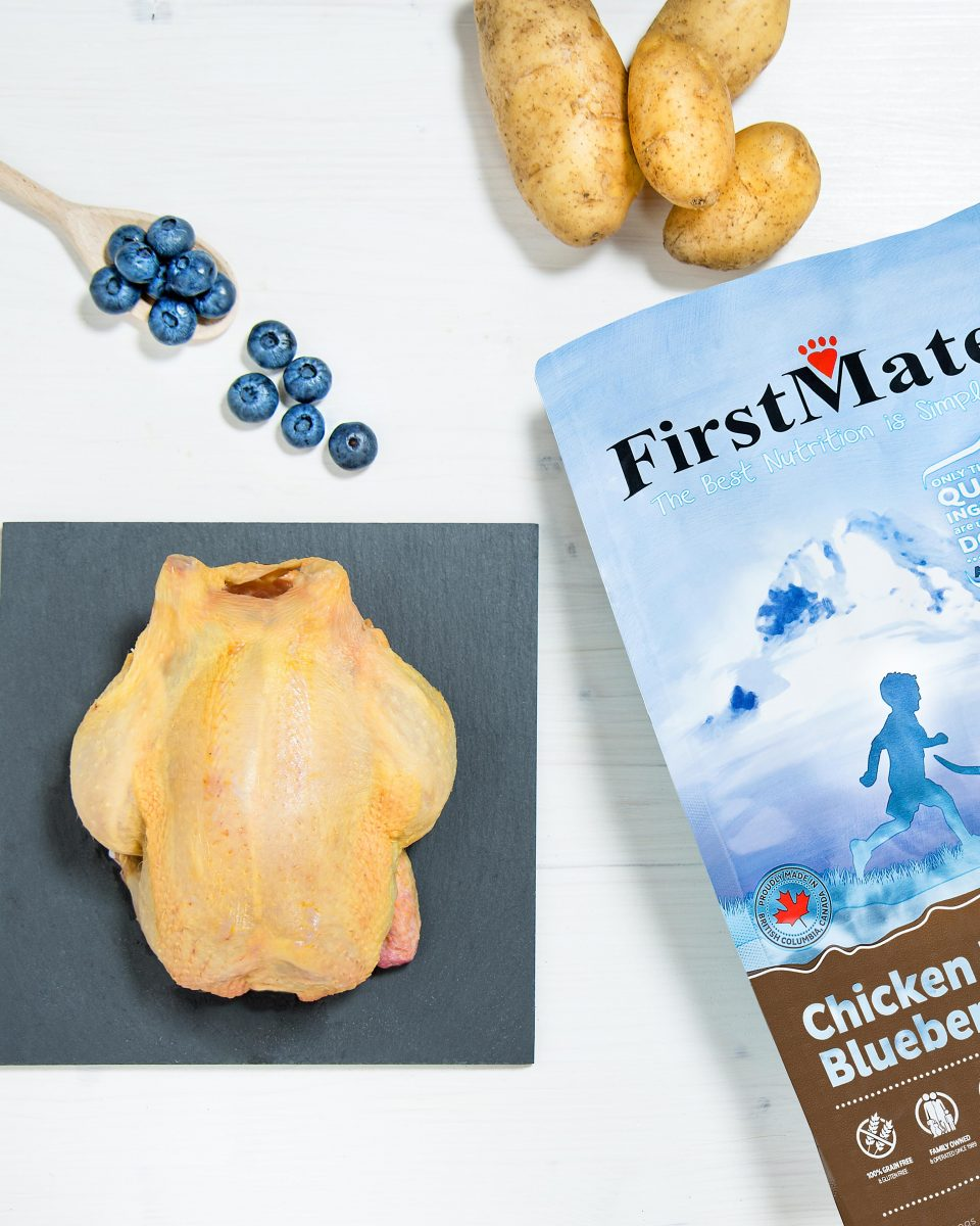 FirstMate crocchette per cane con pollo allevato a terra
